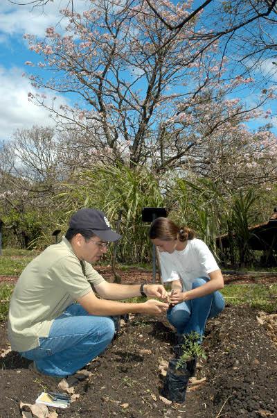 Trabajando la tierra en forma responsable