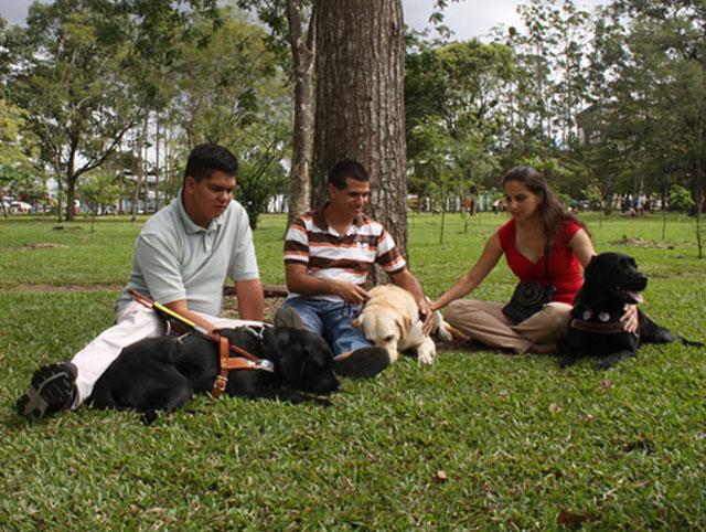 Actividades recreativas que fortalecen las relaciones interpersonales
