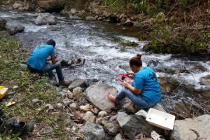 Estudiantes realizaron muestreos de macroinvertebrados para identificar la calidad del agua en distintos puntos de la subcuenca. Foto tomada por Marlon Morúa.