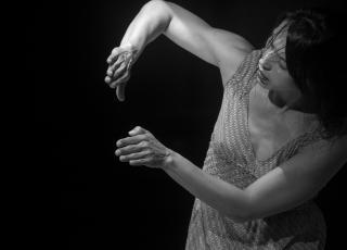 La obra es búsqueda de la relación entre distintos lenguajes artísticos (danza, artes visuales, fotografía, vídeo).