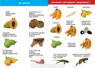 Ejemplo: glosario en lengua malecu, con nombres de animales, frutos y alimentos. Material facilitado por el TC-625.