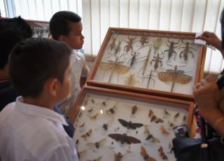 El Museo de Zoología cuenta 5 millones de especímenes aproximadamente entre sus colecciones. Foto: Cristian Esquivel