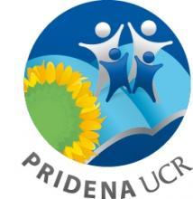 Programa Interdisciplinario de Estudios y Acción Social de los Derechos de la Niñez y la Adolescencia