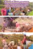 IE-36 Huerta urbana comunitaria como un proceso de educación popular desde una perspectiva agroecosostenible